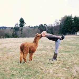 llama llama duck by miranda