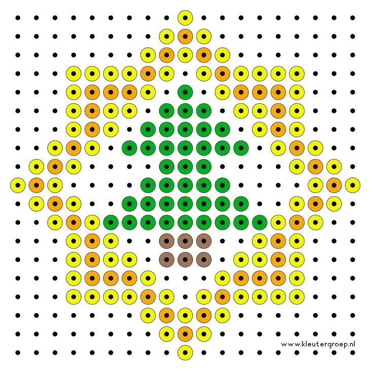 boom in ster.jpg 2.327×2.327 pixels