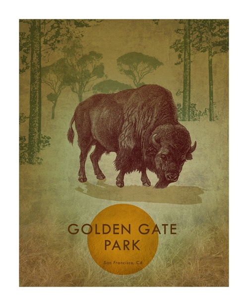 Great poster with a buffalo - GGPark