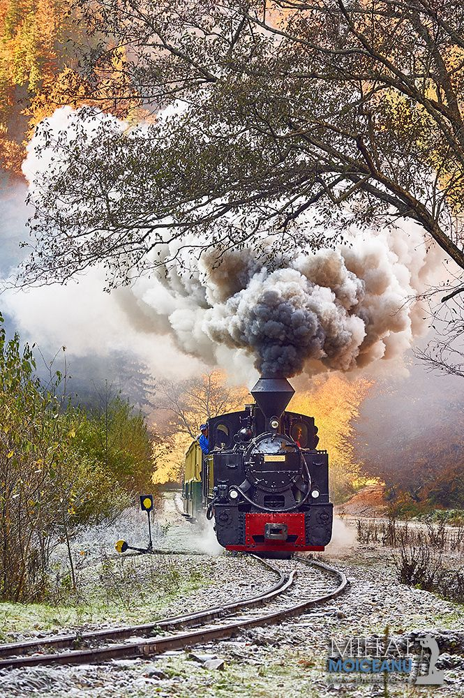 Narrow Gauge Steam Train - Still working, the last Narrow Gauge Steam Train in Romania is used for logging in Maramures.