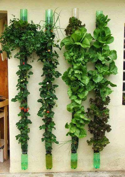 Cultivar el Huerto Casero.: Como funciona un Huerto vertical.