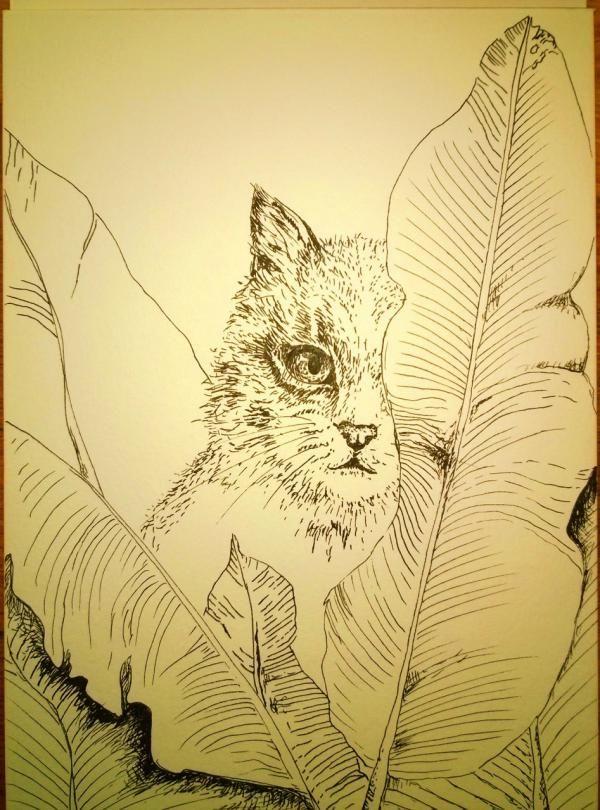 kat tussen bananenbladeren. Net met deze tekening begonnen. work in progress