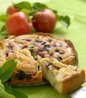 Æble-blåbærkage