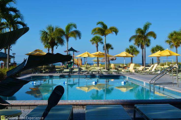 Pool view at Sirata Beach Resort   #Florida #Pool #beach #resort #palmtrees #relaxation #fun #family #vacation
