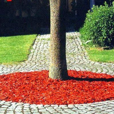 Приствольный круг плодовых деревьев. Обсуждение на LiveInternet - Российский Сервис Онлайн-Дневников
