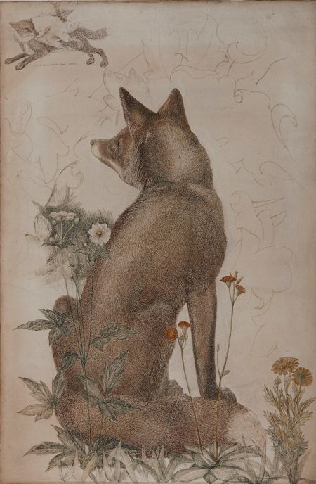 Watercolour drawing of a fox by Philip Webb, c. 1887. ©Paul Highnam