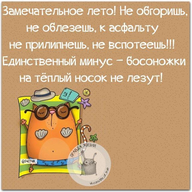#правдажизни #юмор #позитив #лето