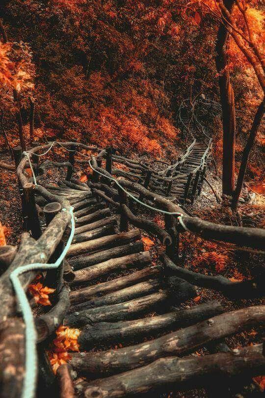 Kedves Pinterest-es  Barátaim/Követőim! A híres béke létra helyett itt egy béke lépcső,ami nekem olyan tünde feeling-et ad valamiért!😎