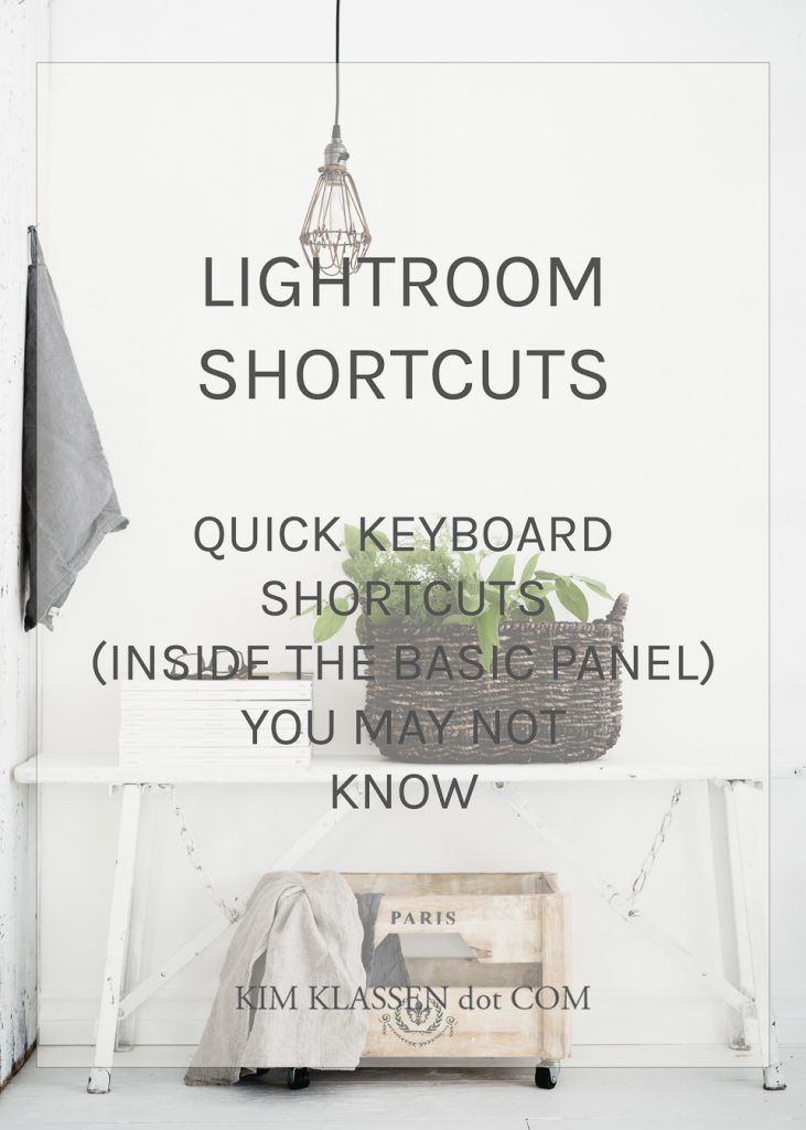 Lightroom basic panel