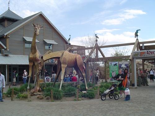 of Zoo Entrance  Photos of Denver Zoo - Entrance to the Denver Zoo ...