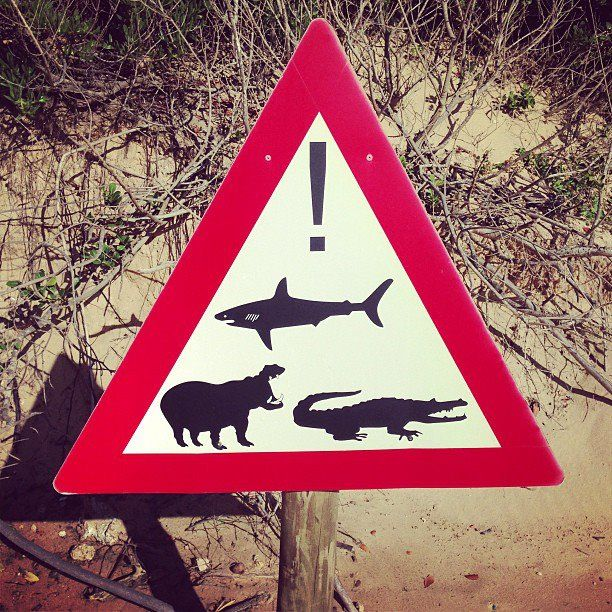 Australia is scary huh? This is on a beach in South Africa.