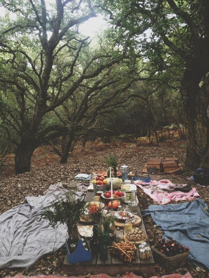 A feast in the woods