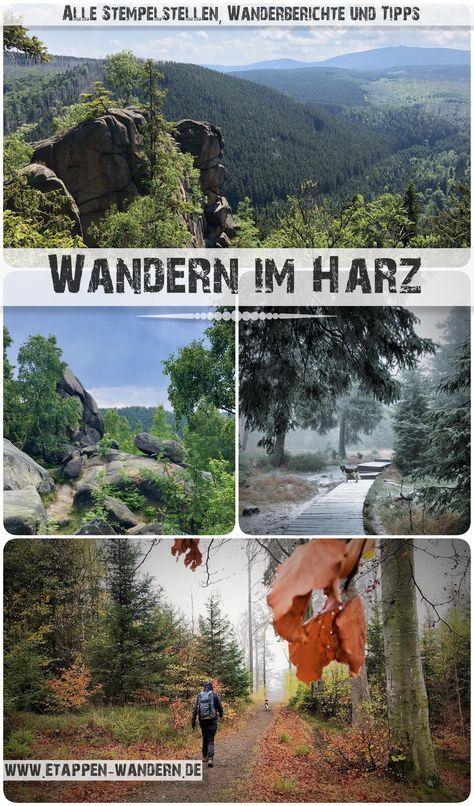 Beim Wandern im Harz stieß man auf das Briefmarkensammeln, um Spaziernadeln zu bekommen …   – Fit werden