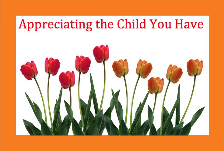 LD Action: Creating Possibilities: Appreciating the Child You Have