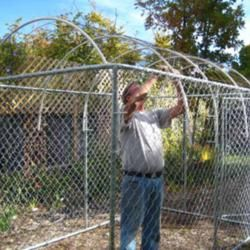 Dog Kennel Roof Ideas | Then PVC pipe was bent along the roof, again using zip ties to attach ...