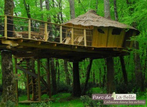 wagamamaya:  Tree House: 木の上のコテージ | wagamamaya