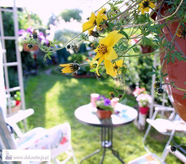 Stara altanka zyskała nowe życie :) I wcale nie był to skomplikowany proces :) Zapraszamy!    #diy #ogród #garden #metamorfoza