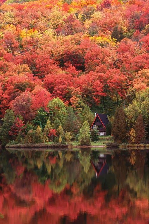 What I Like About Fall - Autumn Lake, Quebec, Canada From Yahiya Mv #fallcolors