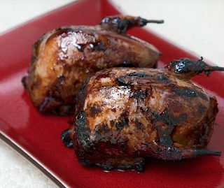 Dove recipes and recipes for pigeons and squab. All are similar birds, with dark meat and little fat. They are excellent braised, grilled or roasted.