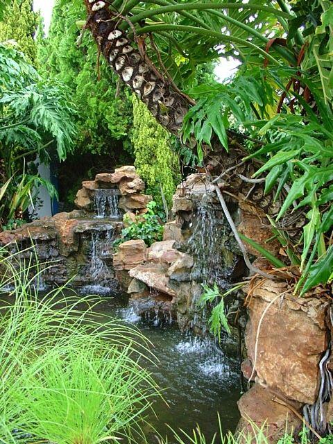 10 best de wet ponds images on pinterest koi ponds