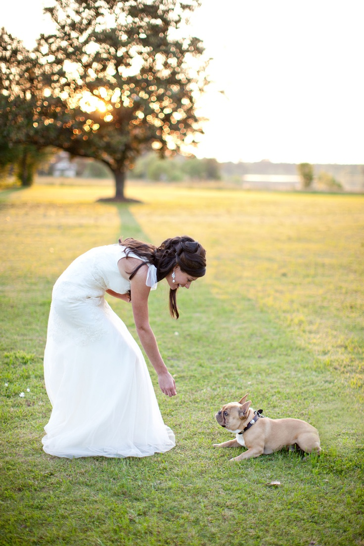 Ahhh!!! idk whether to put this in my wedding board or puppy one haha.