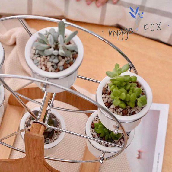 Ferris Wheel With 6 Mini Planters Succulent Planter Ceramic