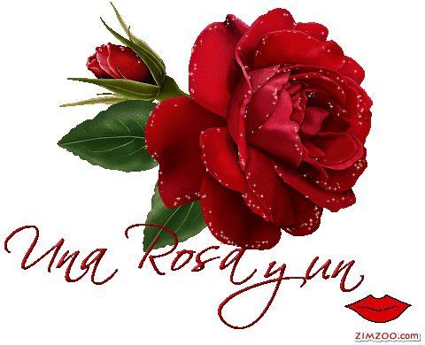 Una Rosa y un Beso - Imagenes con Frases, Fotos y Carteles para Compartir