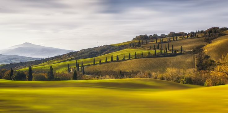 Val D'Orcia 2... by Andrea Cavarischia on 500px
