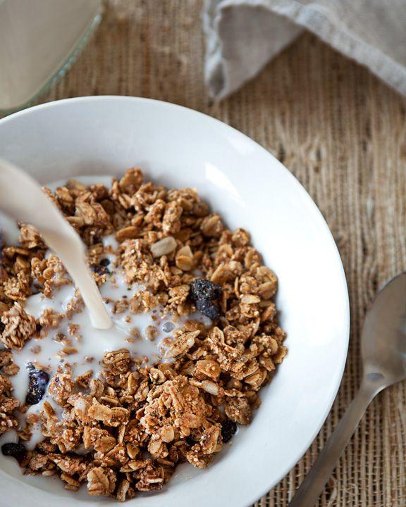 Breakfast Idea Bites Hemp Granola Vegans Food