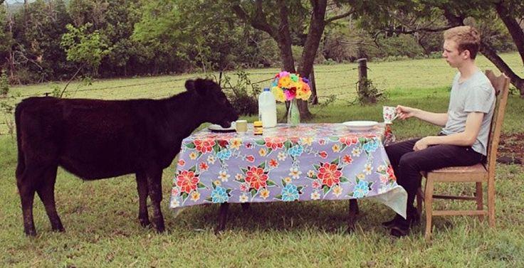 Mexican oilcloth from Las Niñas Textiles.