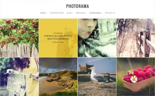 30 Best Responsive WordPress Themes for Photographers & Photo Bloggers
