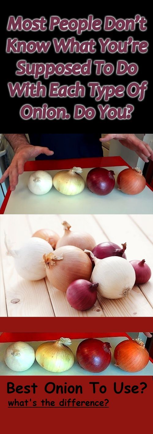 Best Onion to Use ~ Video Demonstration (Hilarious!!!)
