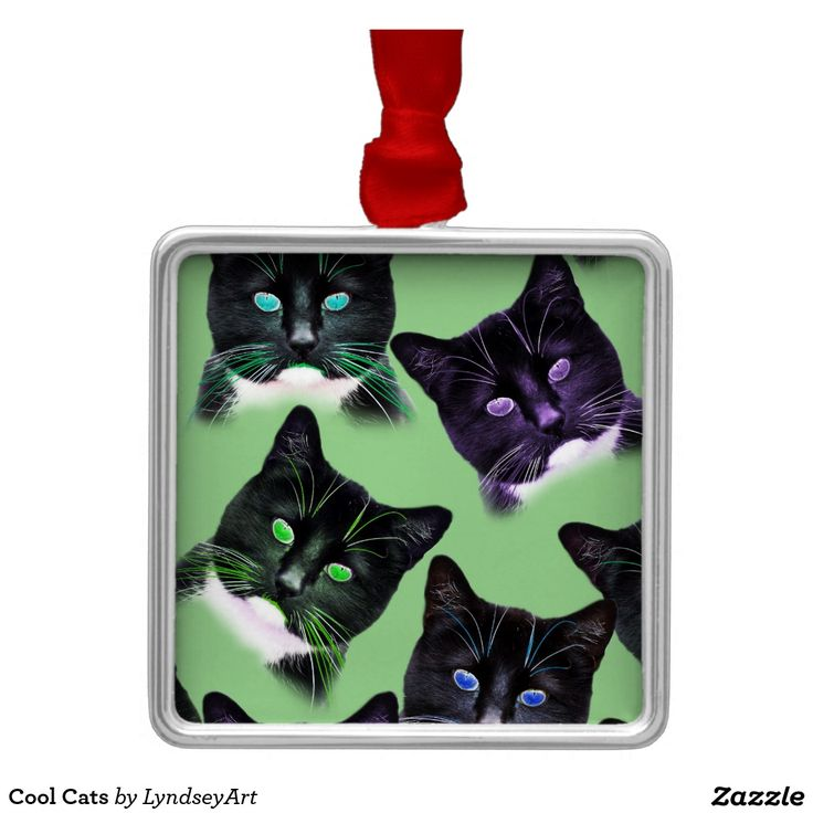 Cool Cats Christmas Decoration! Customise the background to match your Xmas palette....add some text too! LyndseyART #christmas #decorations #cats #lyndseyart #custom