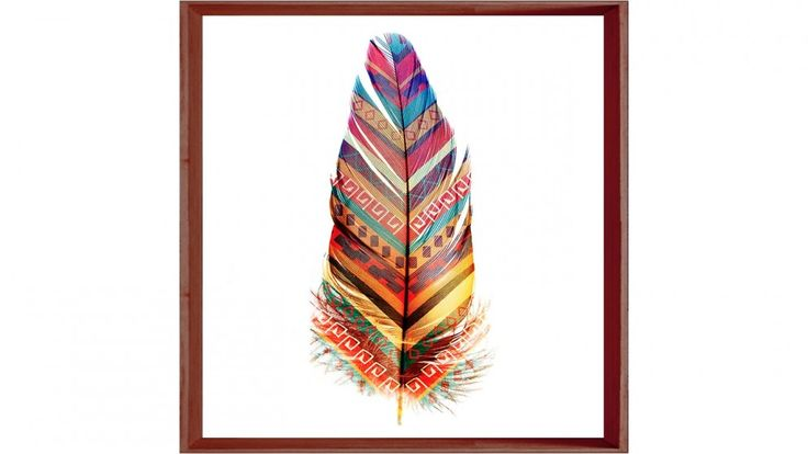 Bizarre Feathers 2 Print   Wall Art   Decorator Items   Furniture, Outdoor  U0026 BBQs
