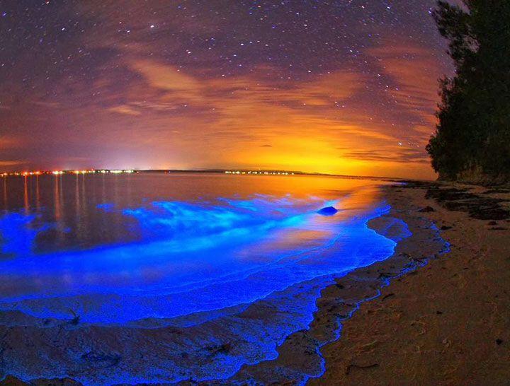 L'eau s'illumine - Une baie magique au large de Porto Rico