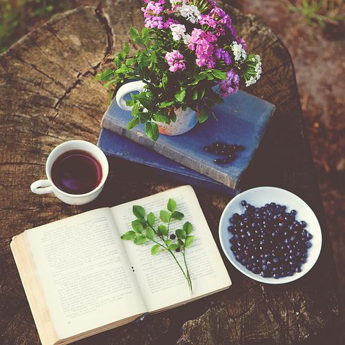 Coffee, nature and books