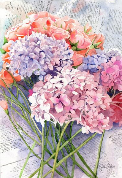 Hydrangea Watercolor Painting