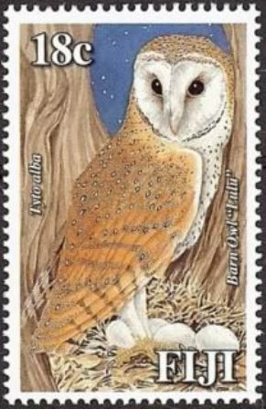 Stamps showing western barn owl tyto alba