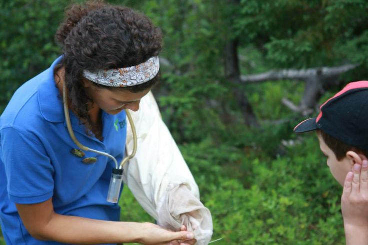 What did we catch? The School Malaise Trap  Program is the perfect opportunity for students to be introduced to the life of a field biologist! http://malaiseprogram.ca  #EnvironmentalEducation  #SMTP #BIObus #Biodiversity