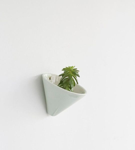FRWEB_LIVING_GALACOLLIER-mint-planter