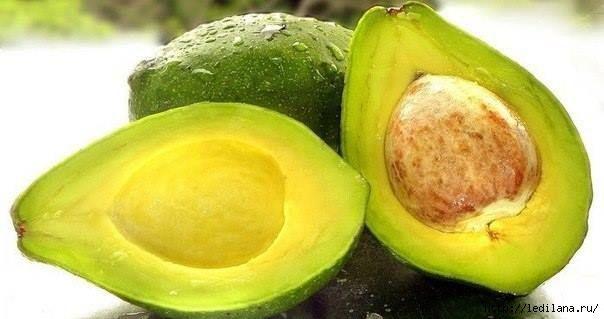 Почему не надо выбрасывать косточки авокадо?     1. Косточки авокадо способствуют угнетению роста любых опухолей. Всё потому, что в них сод...