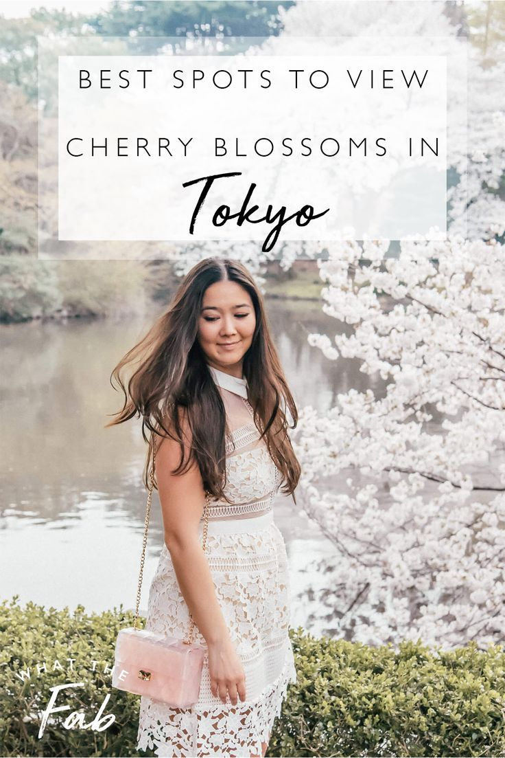 Best Places To View Cherry Blossoms In Tokyo 2021 Japan Travel Destinations Japan Travel Tokyo Japan Travel