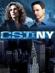Csi New York Online