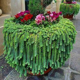 Nilzagifsanimados: Jardins e Paisagismo   – Jardinagem