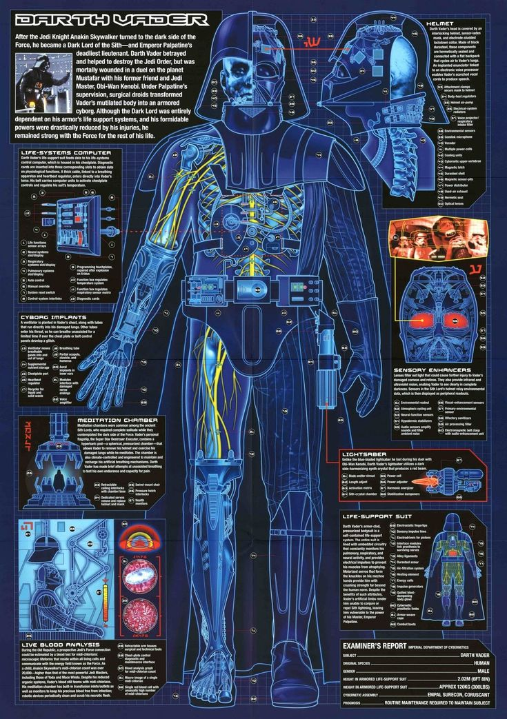 Darth Vader cybernetics info guide