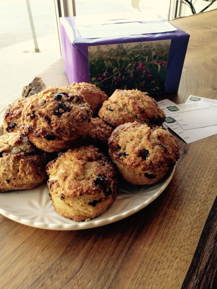 Saskatoon berry scones and other treats featuring Saskatoon berries all week for the 1st annual Saskatoon Berry Festival.