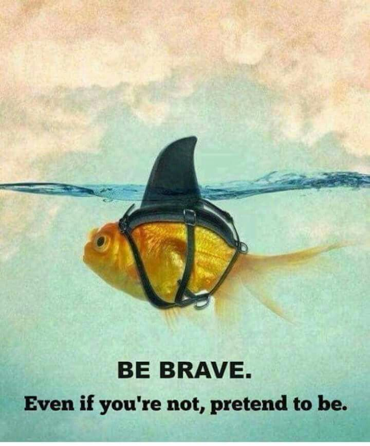 Be brave!                                                                                                                                                      More