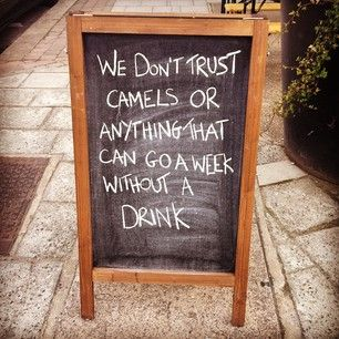 And a pub that doesn't allow camels in. | 33 Brilliantly Blunt Pub Signs That Will Make You Want A Drink