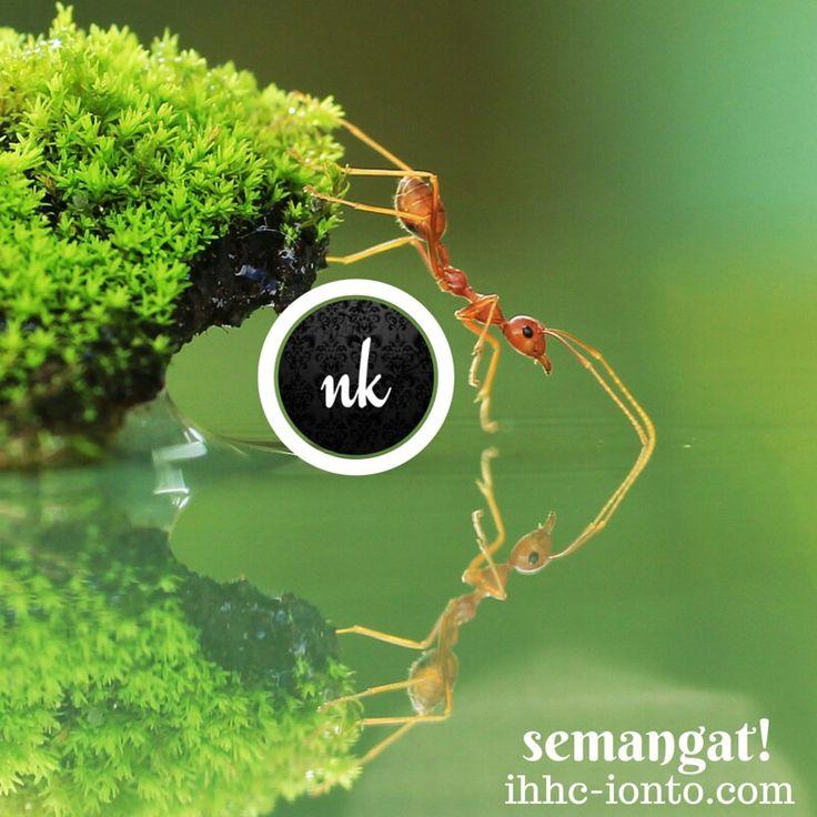 Semangat dan kerja keras. Ayo Kawan kejar suksesmu!  Konsultasi & produk hyperhidrosis Indonesia tlp/WA 0813 1617 7052 BBM 5251 9E61
