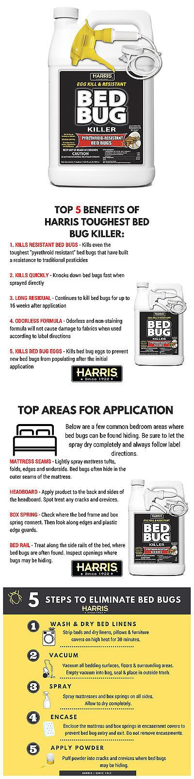 best 25+ what kills bed bugs ideas only on pinterest   stink bugs